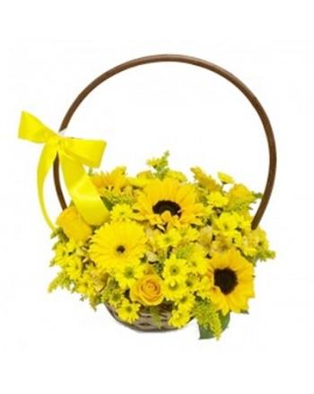 Encanto Amarelo