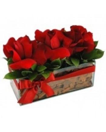Jardineira de Rosas